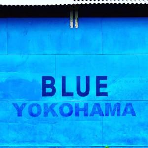 ブル-ヨコハマ